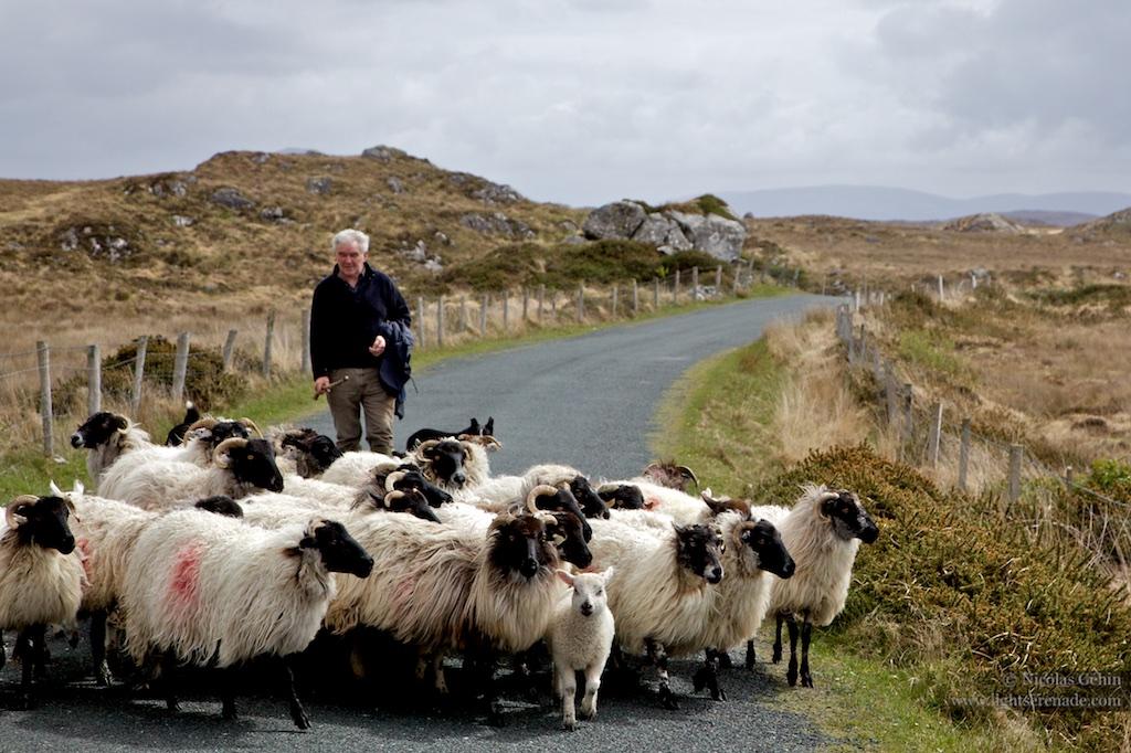 Irlande_073